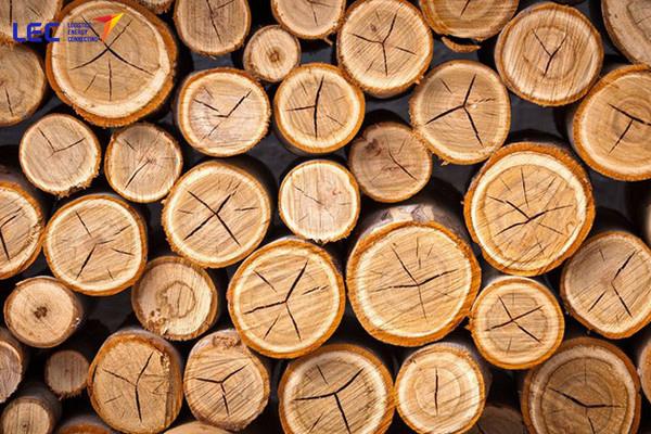 Ngành gỗ Việt Nam